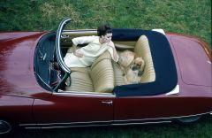 DS 21 Cabriolet   66.20.3   copyright A. MARTIN